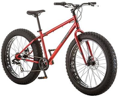 Fat-Tire Bike